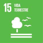 Essa é uma ação da Ufes relacionada ao Objetivo do Desenvolvimento Sustentável 15 da Organização das Nações Unidas. Clique e veja outras ações.
