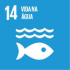 Essa é uma ação da Ufes relacionada ao Objetivo do Desenvolvimento Sustentável 14 da Organização das Nações Unidas. Clique e veja outras ações.